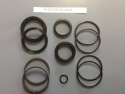 "1-1/2"" ROD x 2-1/2"" BORE: BOYDSTUN SEAL KIT"